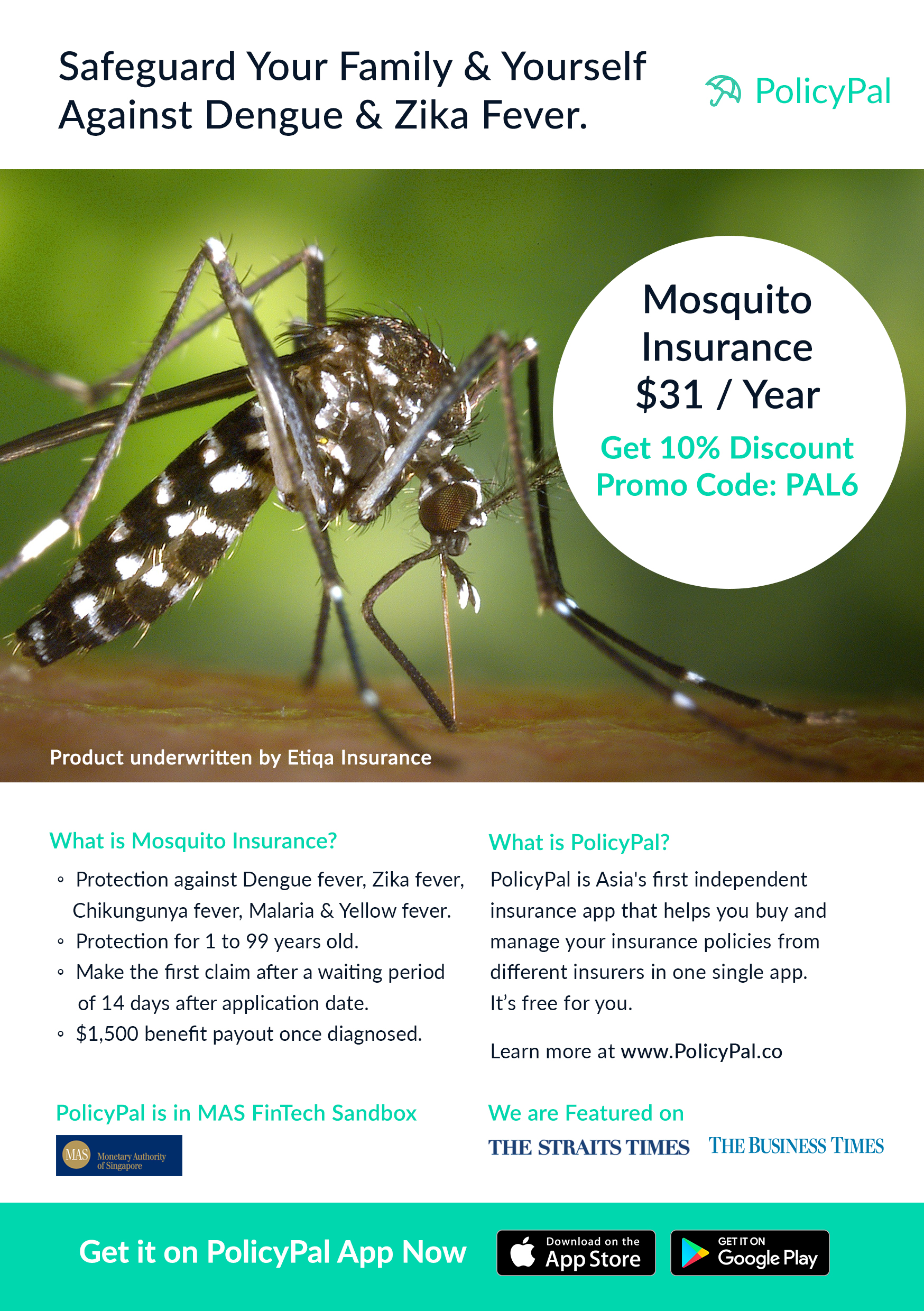 A5Brochure_Mosquito3